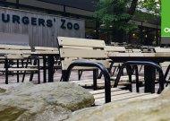 Banner Burgers Zoo Accoya